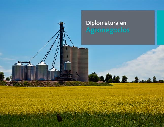 Diplomatura en Agronegocios