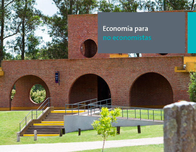 Economía para no economistas